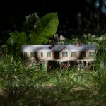 ANTIWONDERLAND Monet's dream