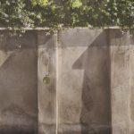 Wall #12
